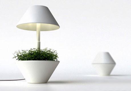 盆栽台灯 享受灯光带来的绿色
