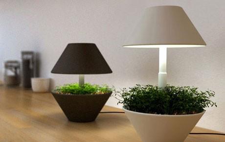 网络接单平台盆栽台灯 享受灯光带来的绿色-玩意儿