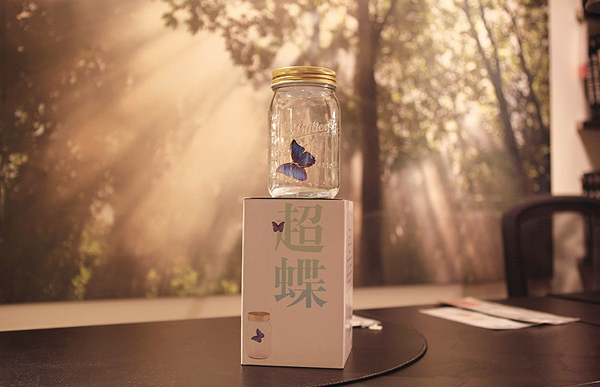 蝴蝶罐(五)