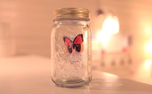 蝴蝶罐 创意浪漫礼物