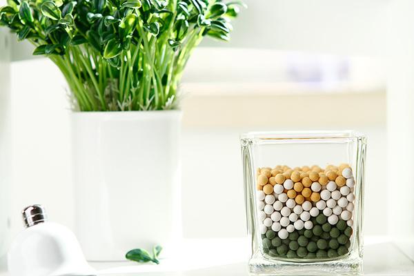 陶碳球的绿色植物(二)