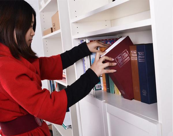 字典的造型保险箱(二)