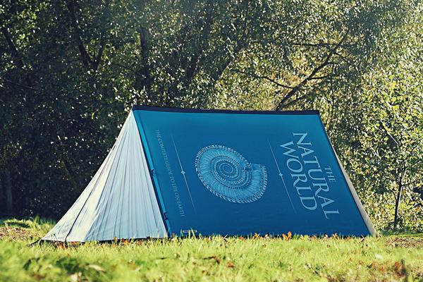 各种样式的创意帐篷