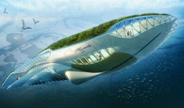 水路两栖生态环保船底部