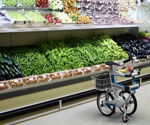 Ville 两用折叠自行车