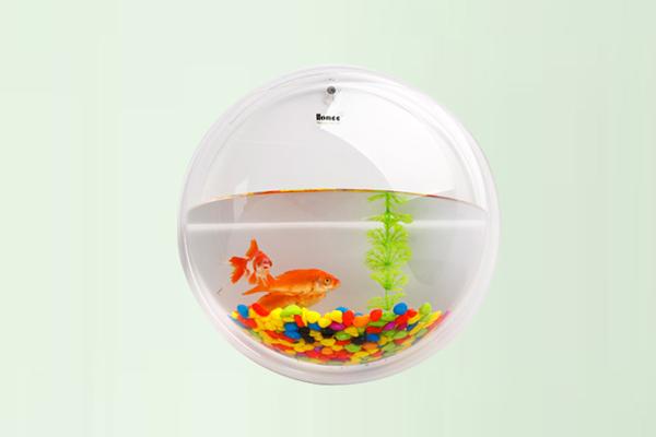 创意的悬挂式鱼缸-玩意儿
