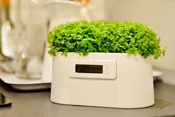 植物发电系统