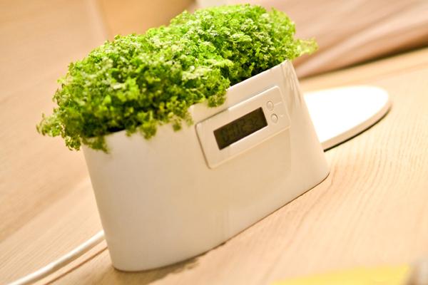 植物发电系统(三)