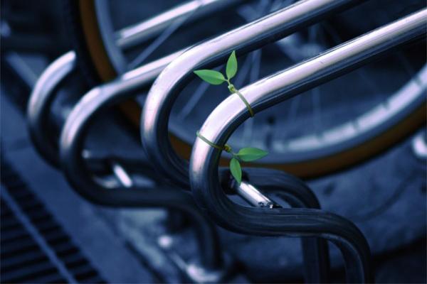 绿叶电线整理带(二)