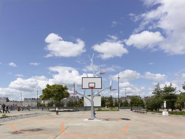 有爱的多篮球框的篮球树(四)