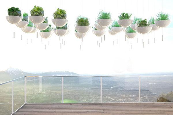 阳台上悬浮的绿色植物