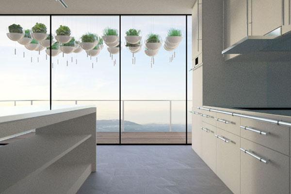 阳台上悬浮的绿色植物(三)