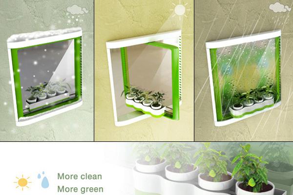 双面玻璃窗与绿植