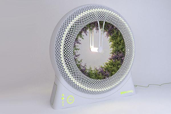 Green Wheel 无土栽培种植(二)