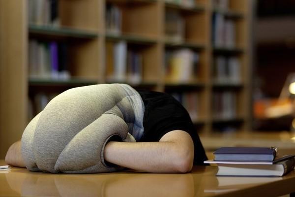 新奇鸵鸟创意枕头(二)