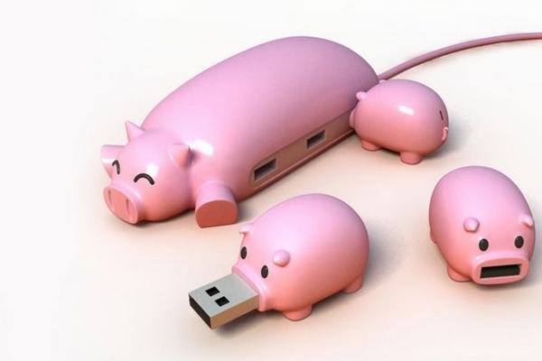 猪妈妈集线器和它的宝宝U盘