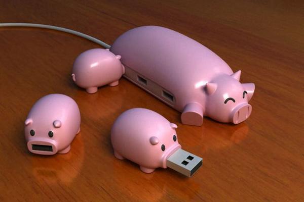 猪妈妈集线器和它的宝宝U盘(二)
