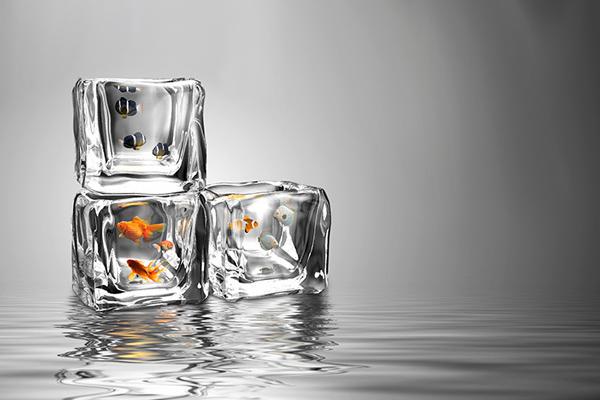 Ice Fishing 冰冻鱼缸(三)