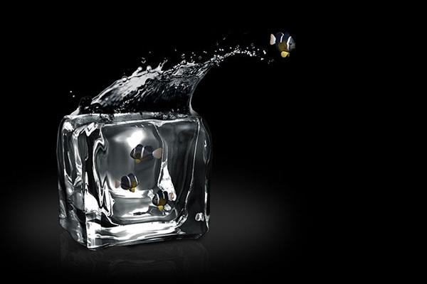 Ice Fishing 冰冻鱼缸(五)