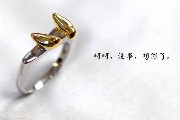 深情对唱小情歌情侣戒指(四)