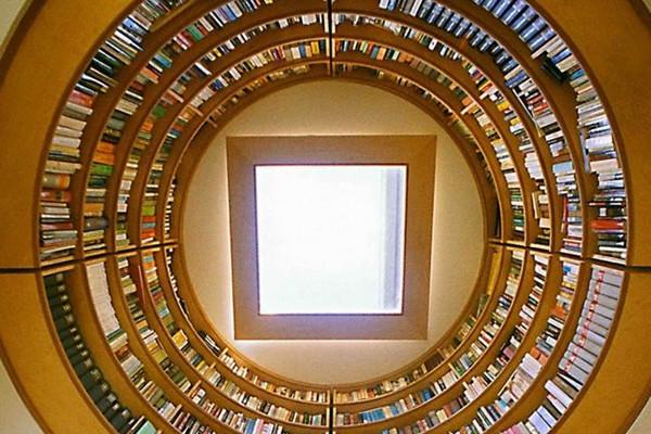 家里的空中图书馆(三)