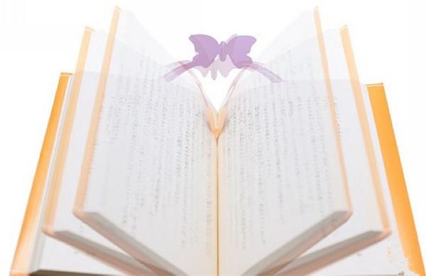 新奇漂亮的蝴蝶书套(四)
