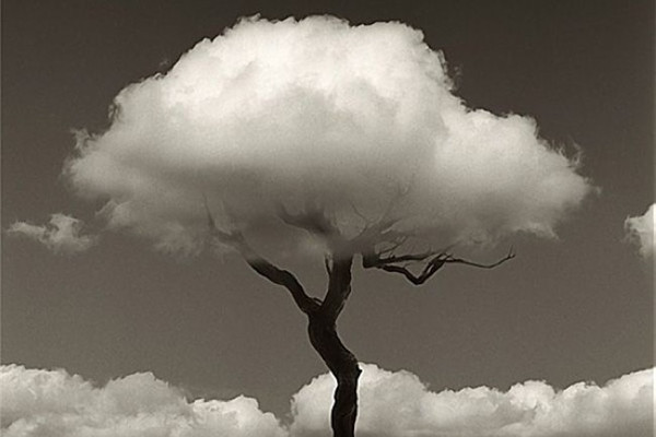 超现实主义黑白摄影(七)