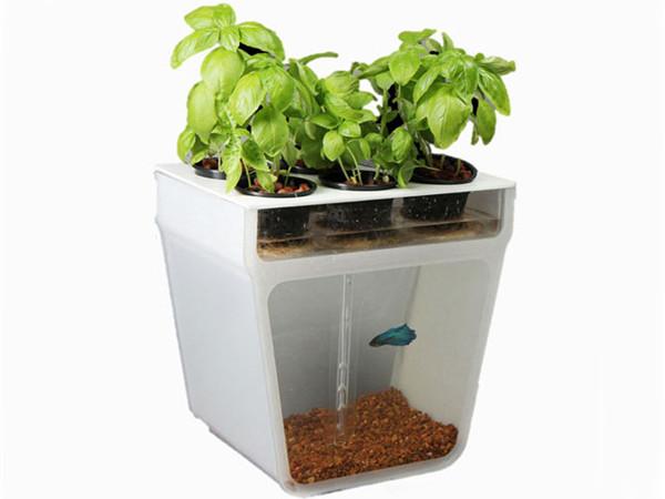 方便的自洁式鱼缸(三)