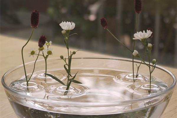 赋予诗意的涟漪花瓶(五)