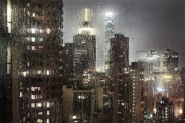 动人的雨中香港(六)