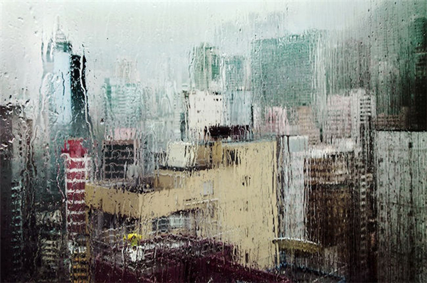 动人的雨中香港(七)