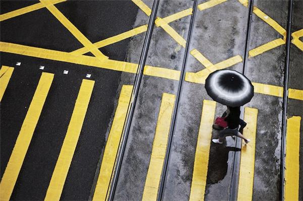 动人的雨中香港(八)