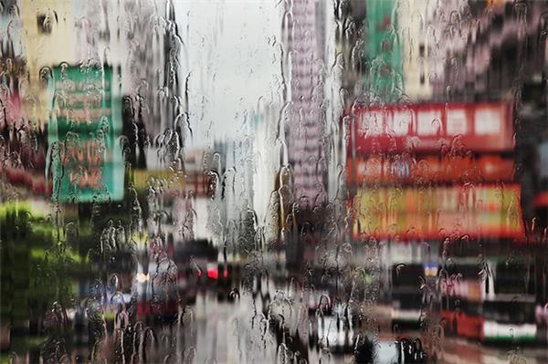 动人的雨中香港(九)