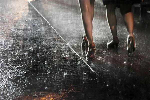 动人的雨中香港(十一)