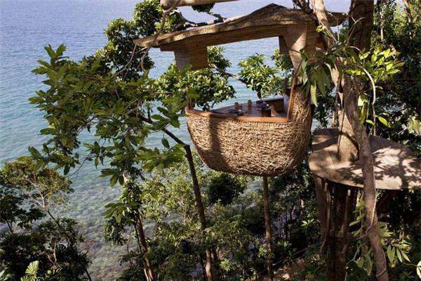 有趣的鸟巢餐厅