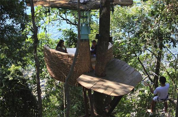 有趣的鸟巢餐厅(三)