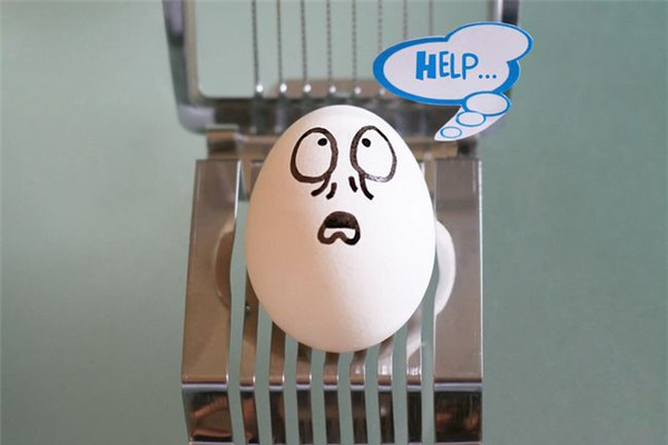 鸡蛋小子的生活