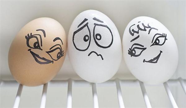 鸡蛋小子的生活(十一)