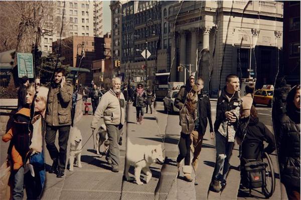 有趣的纽约街头时空剪辑(三)