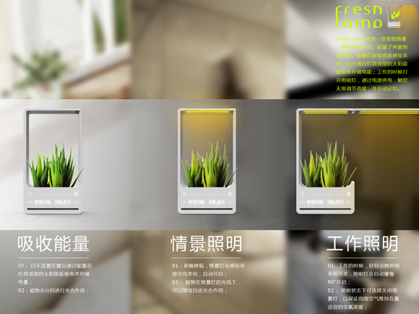 Fresh Lamp 带植物的灯具(三)