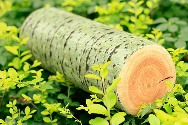 木头质感的靠枕(二)