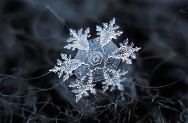 绝美的微距雪花
