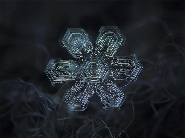 绝美的微距雪花(七)