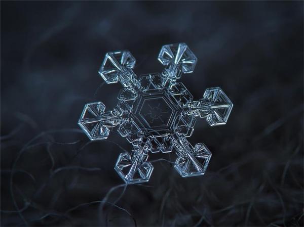 绝美的微距雪花(九)