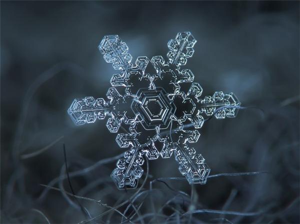 绝美的微距雪花(十四)