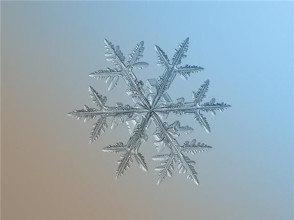 绝美的微距雪花(十五)