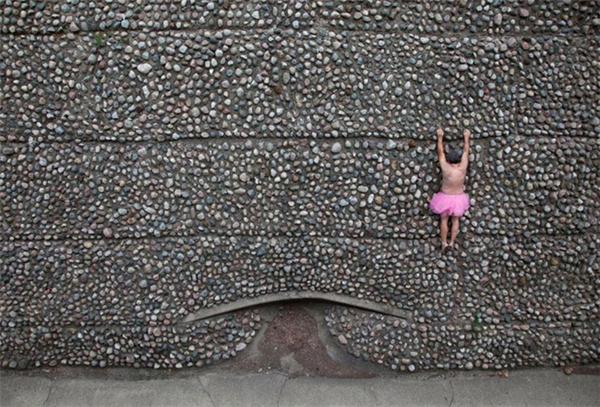 粉红芭蕾舞裙的力量(六)
