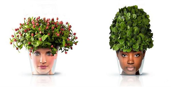 非常搞笑的头像花盆(四)