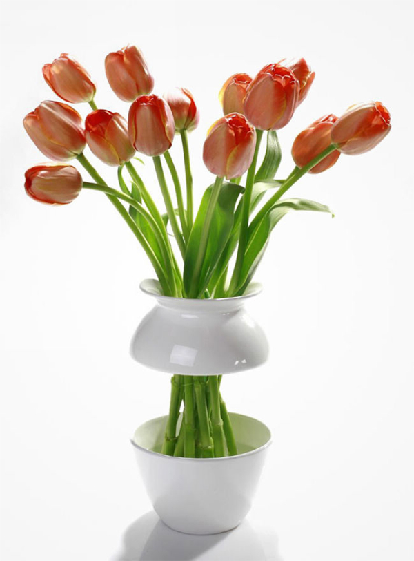 漂亮的花瓶设计(二)
