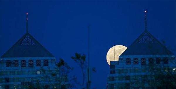 元宵不忘赏月(十一)